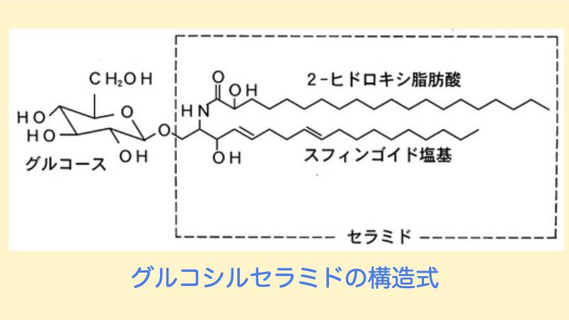 グルコシルセラミドの構造式