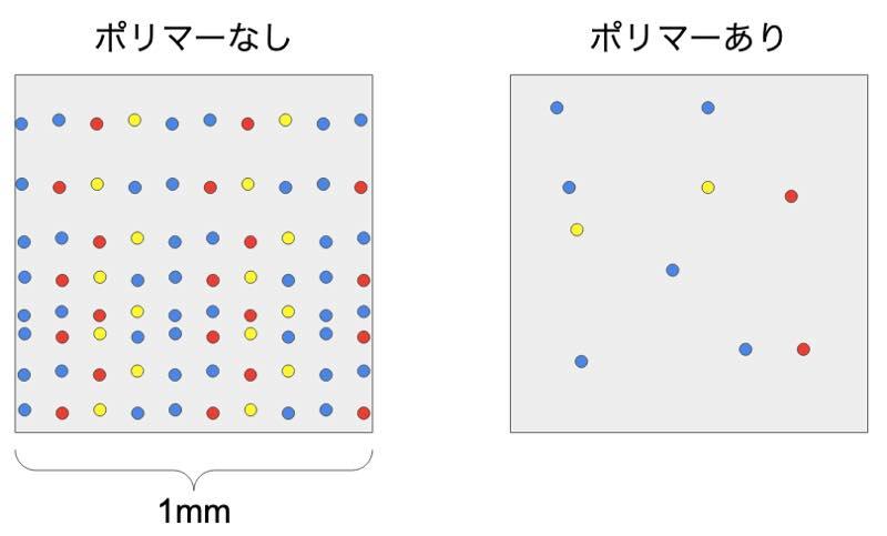 花粉の付着実験の模式図